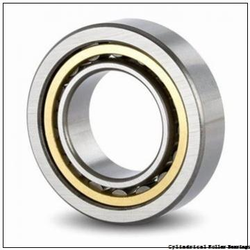 0.984 Inch | 25 Millimeter x 2.441 Inch | 62 Millimeter x 0.669 Inch | 17 Millimeter  LINK BELT MA1305EX  Cylindrical Roller Bearings