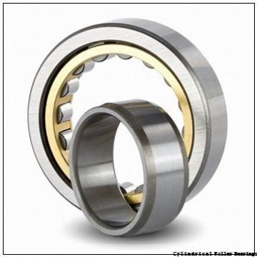 2.559 Inch | 65 Millimeter x 4.724 Inch | 120 Millimeter x 1.5 Inch | 38.1 Millimeter  LINK BELT MU5213TV  Cylindrical Roller Bearings