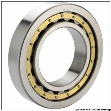 2.559 Inch | 65 Millimeter x 4.724 Inch | 120 Millimeter x 0.906 Inch | 23 Millimeter  LINK BELT MA1213EX  Cylindrical Roller Bearings