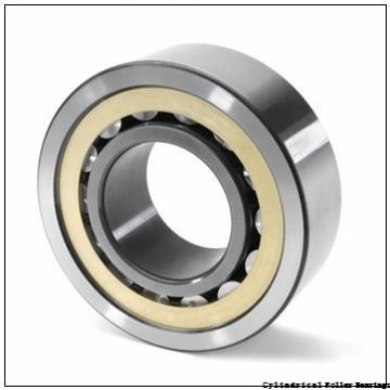 2.559 Inch | 65 Millimeter x 4.724 Inch | 120 Millimeter x 1.5 Inch | 38.1 Millimeter  LINK BELT MU5213DX  Cylindrical Roller Bearings